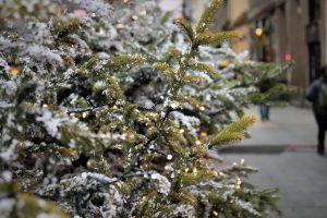sapin noel rue decoration neige